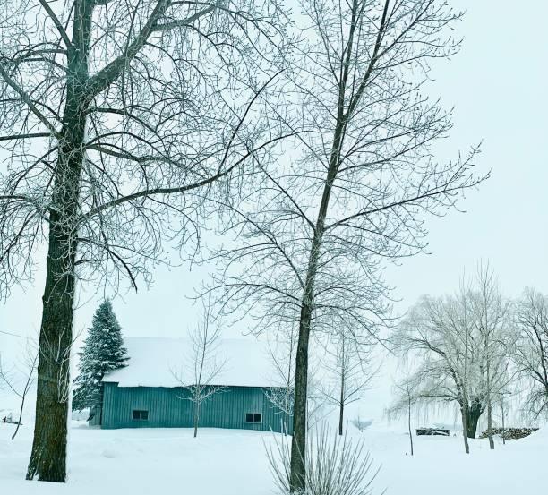 grange dans la forêt d'hiver - josianne toubeix photos et images de collection