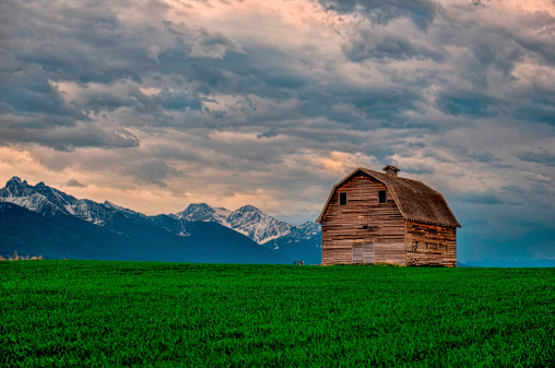 Barn Stock Photo - Download Image Now