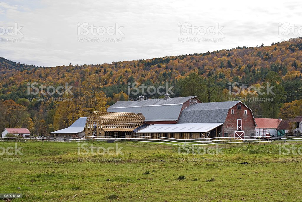 Barn Raising royalty-free stock photo