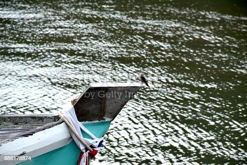 istock barn swallow on boat 686178874