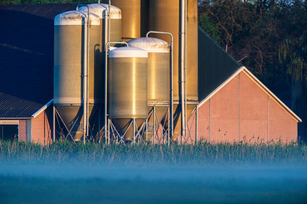 Barn with silos in misty countryside at sunrise. stock photo
