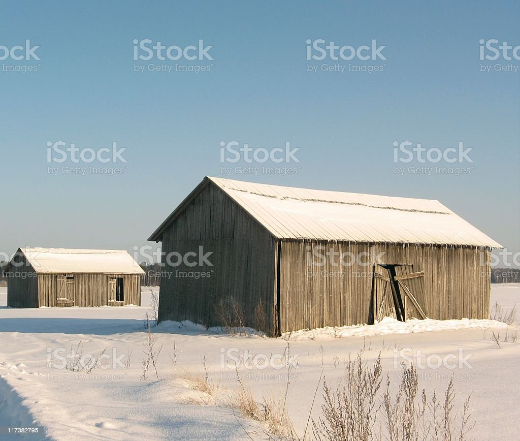 Barns in winter royalty-free stock photo