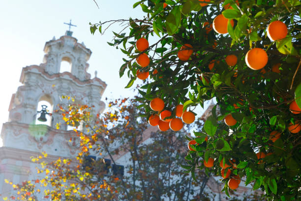 Baroque Church (Iglesia del Carmen) in Cadiz, Spain stock photo