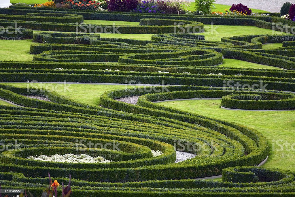 Baroque garden and hedges of box trees in Herrenhäuser Gärten in...