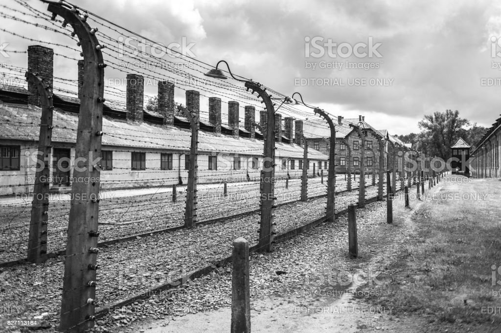 Barracks And Barbed Wire In A Concentration Camp In Auschwitz Museum ...