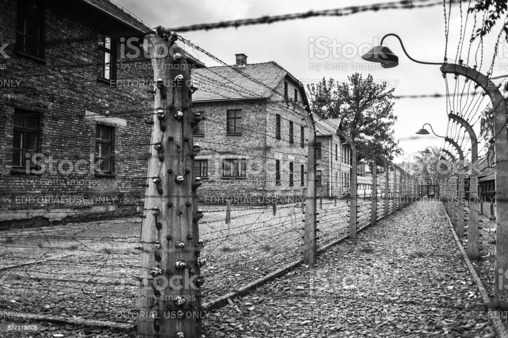 Barracks And Barbed Wire In A Concentration Camp In Auschwitz Museum