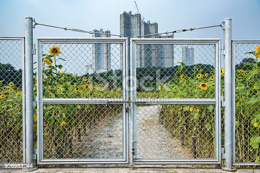 istock Barred areas blocked by barbed wire. 926983244