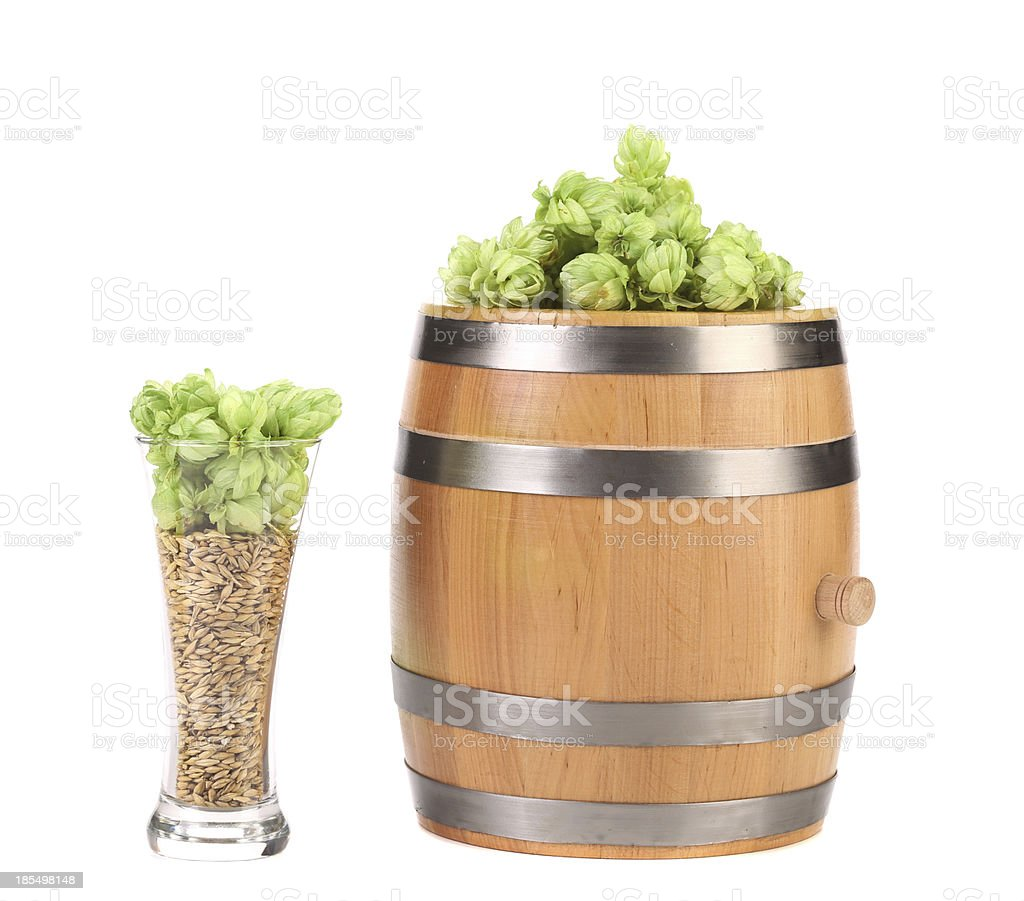 Barrel and glass with hop barley. royalty-free stock photo