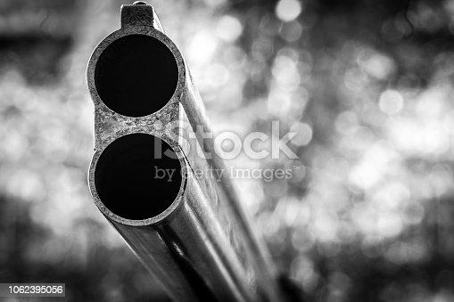 istock Barrel hunting rifle 1062395056