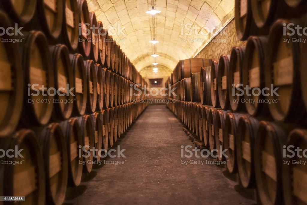 Barrel rows in a winery - foto stock
