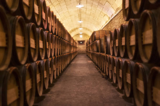Barrel rows in a winery Barrel rows in a winery cellar stock pictures, royalty-free photos & images