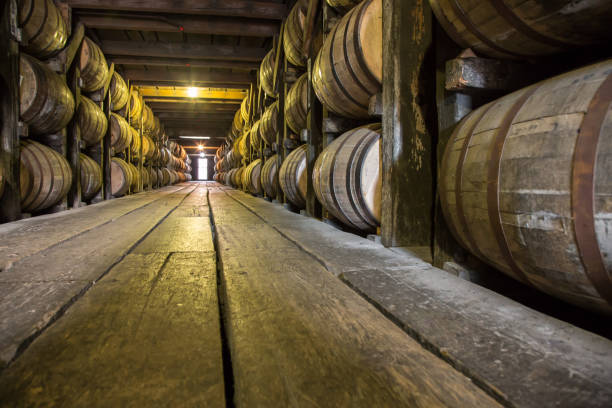 barrels of bourbon whiskey - barrel stock pictures, royalty-free photos & images