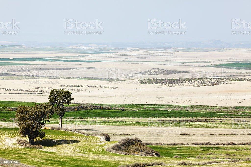 barren landscape in Monegros Spain stock photo
