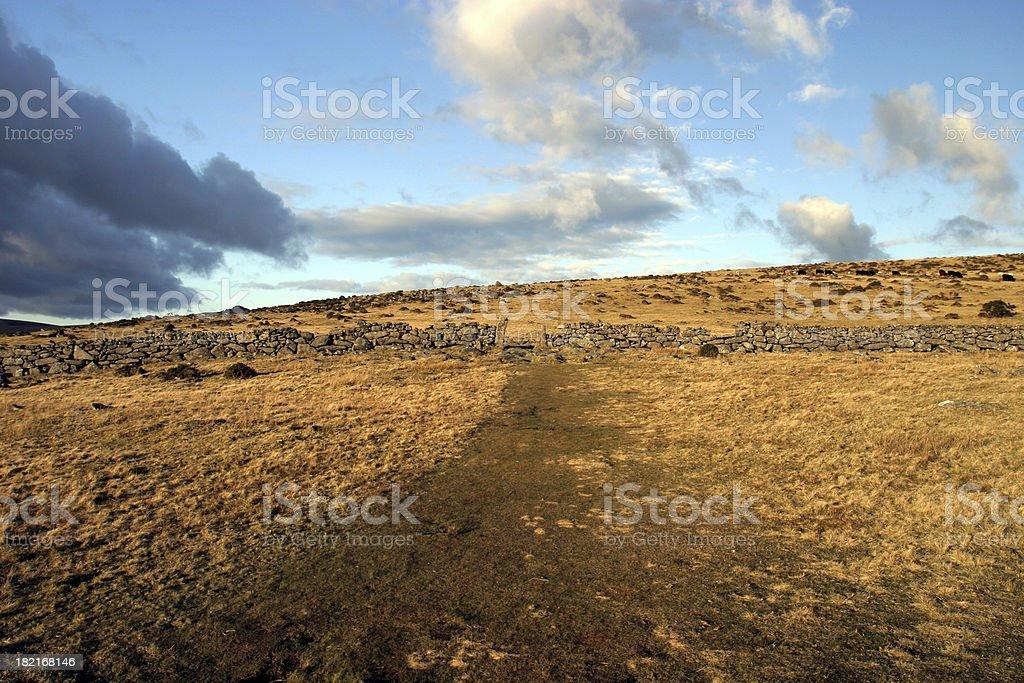 Barren moorland 2 royalty-free stock photo