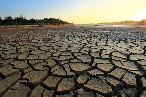 barren - kuraklık stok fotoğraflar ve resimler