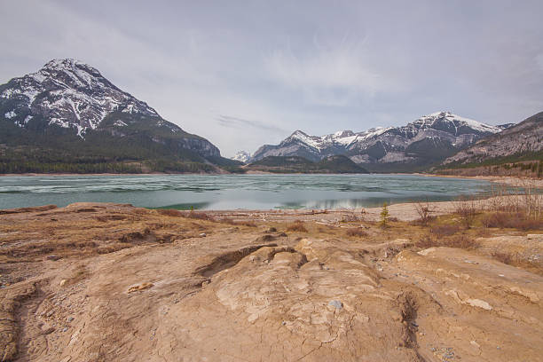 Barrier Lake and Mount Baldy Landscape. Spring hike scenery of textured ground, Barrier Lake and Mount Baldy. mount baldy stock pictures, royalty-free photos & images