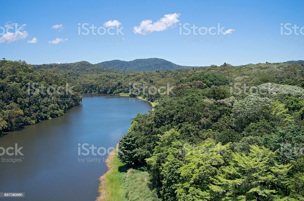 Barron River and Rainforest stock photo