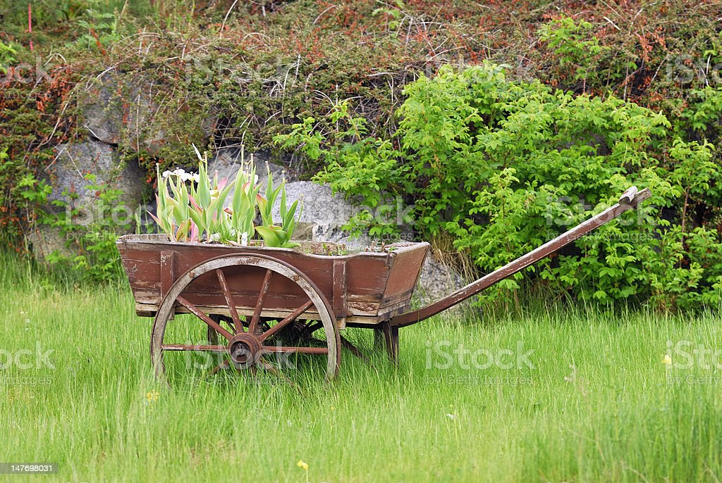 Barrow and Meadow royalty-free stock photo