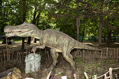 baryonyx-picture-id477397008?s=170x170
