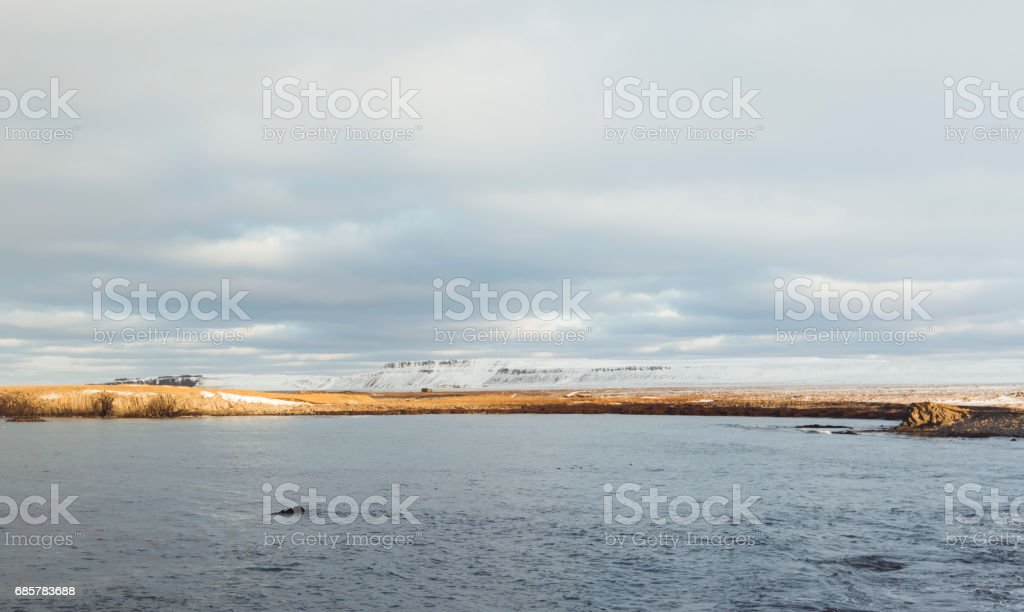 Basalt columns at Kálfshamarsvík on the coast of the ocean, sunset winter landscape royalty-free stock photo