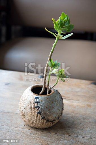 istock Base ball vase 528296030