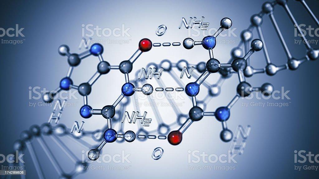 Base Pairing Of DNA royalty-free stock photo