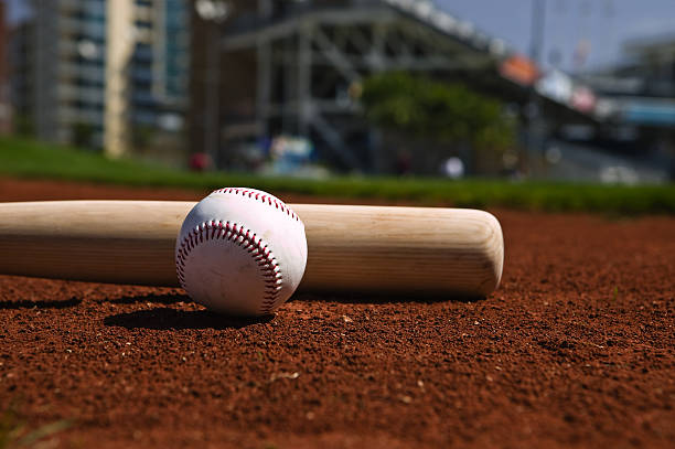 baseball and bat - spring training stock photos and pictures