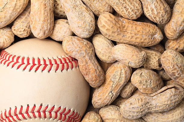 baseball and peanuts - peanut food stock photos and pictures