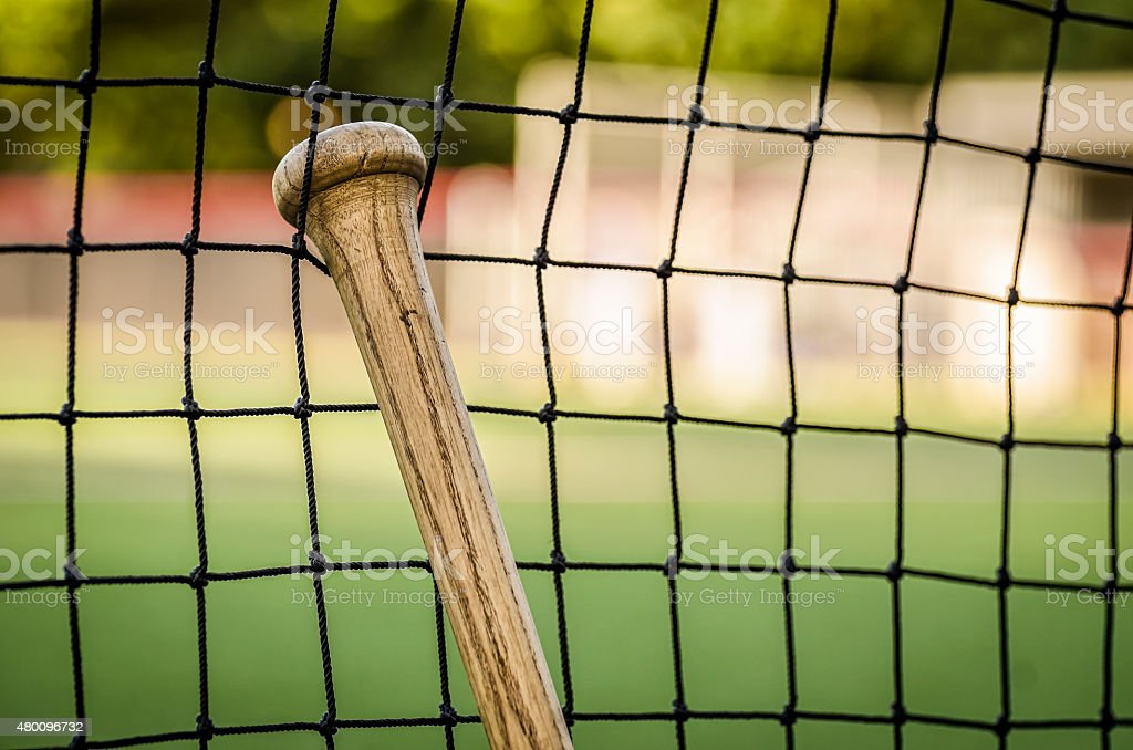 Baseball Bat Leaning Against Dugout Net stock photo