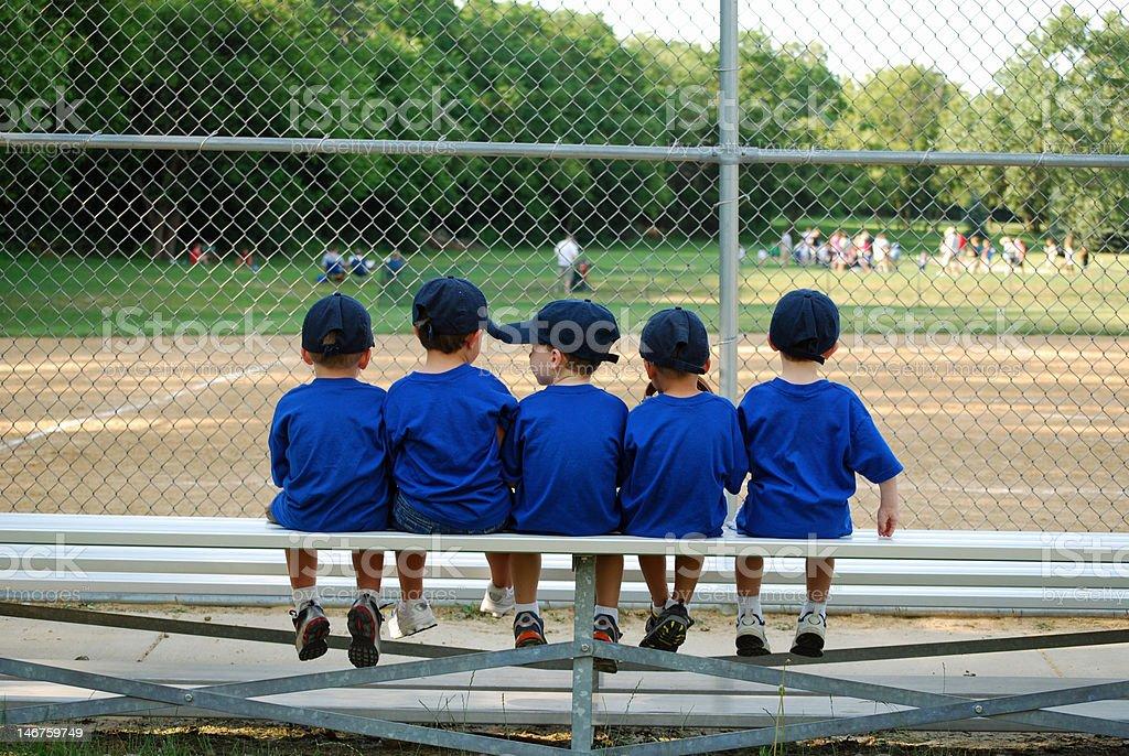 baseball bench warmers stock photo