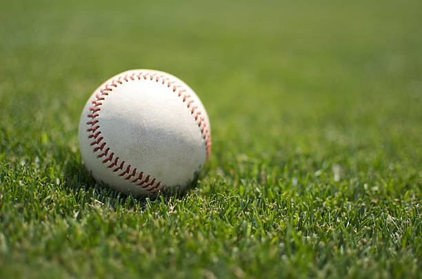 baseball close up on the grass - spring training stock photos and pictures