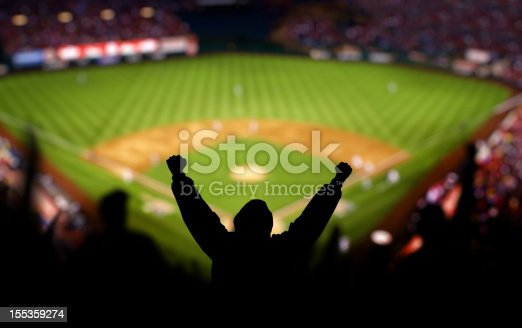 Fans excited at a baseball game