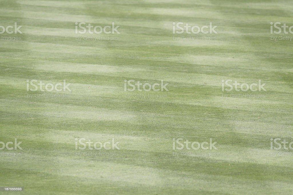 Baseball Field Grass stock photo