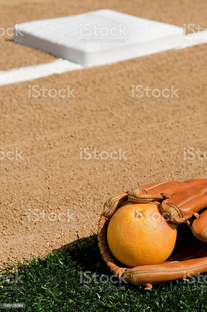 Baseball Grapefruit League royalty-free stock photo
