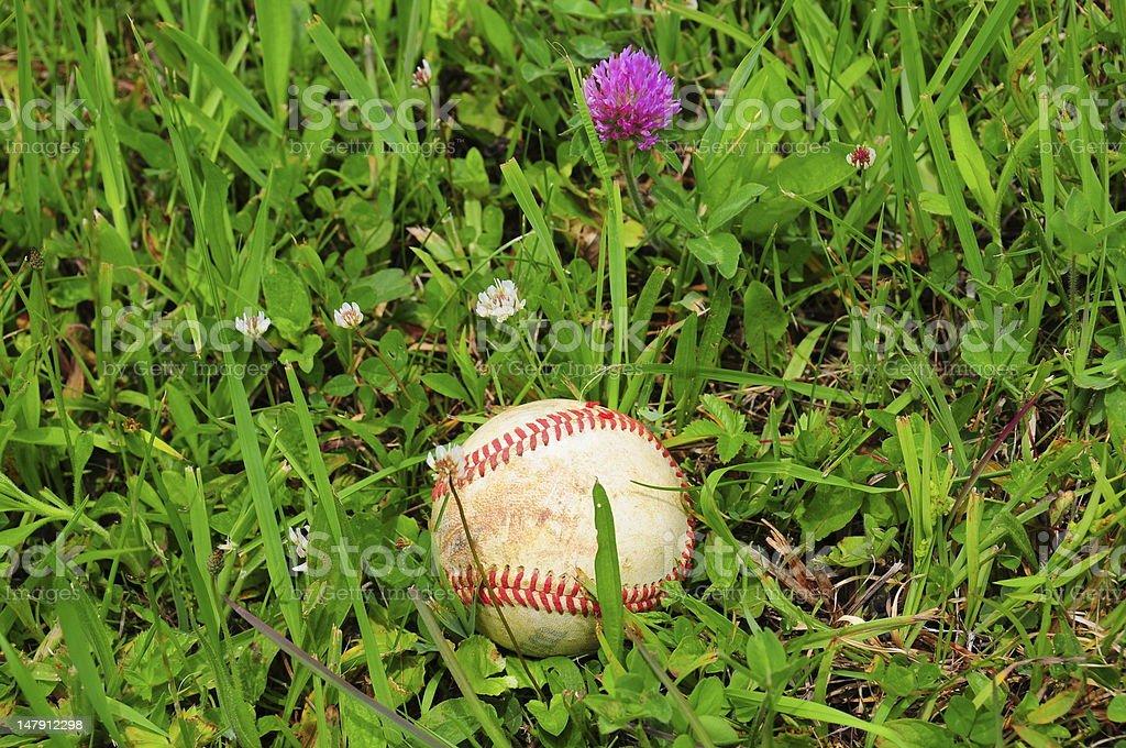 Baseball in Field royalty-free stock photo