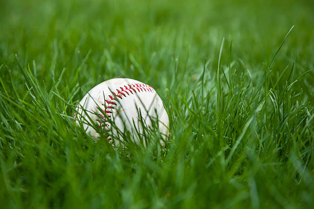 Baseball in Grass stock photo