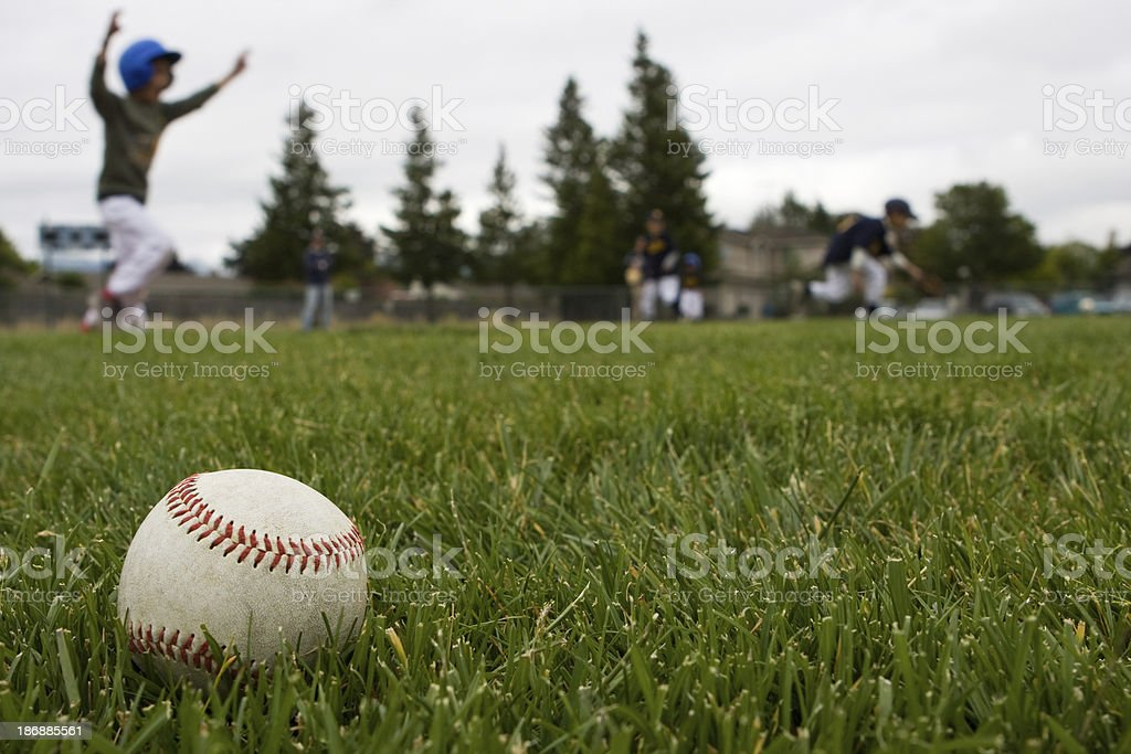Baseball in the Grass stock photo
