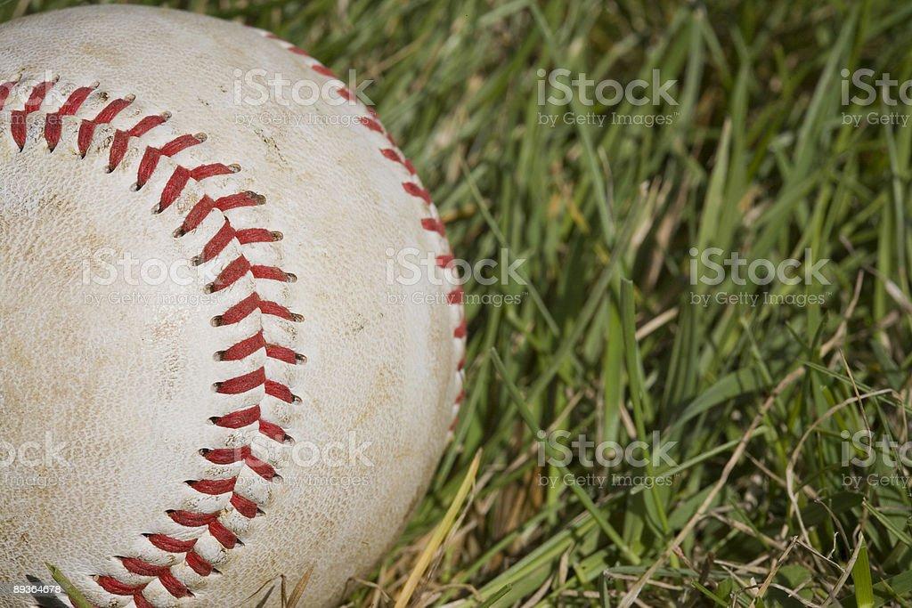 Baseball in the Grass royalty free stockfoto