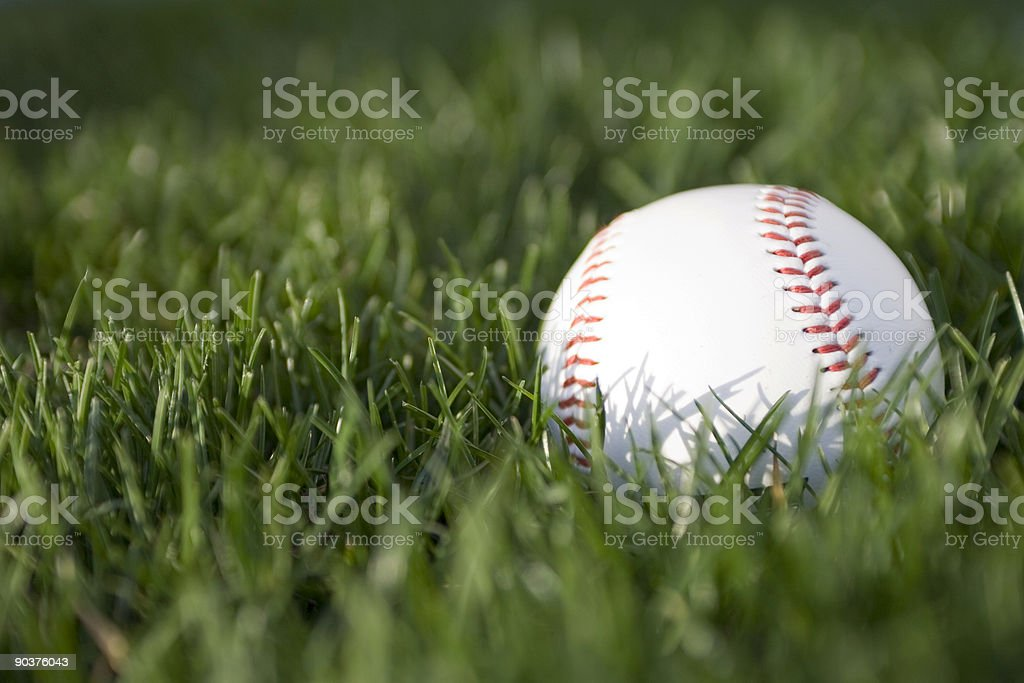 Baseball in the Grass with Text Area stock photo