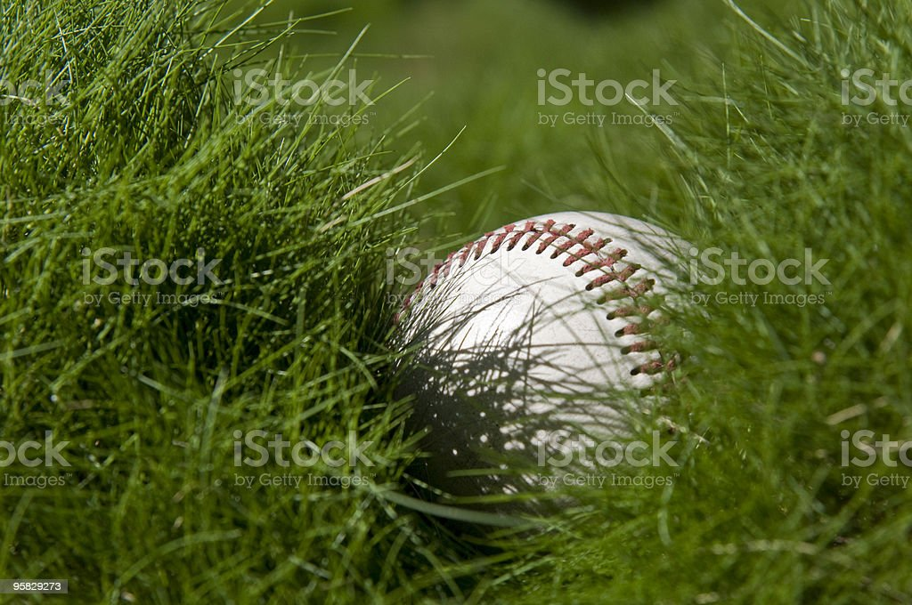 baseball lost in the grass royalty-free stock photo