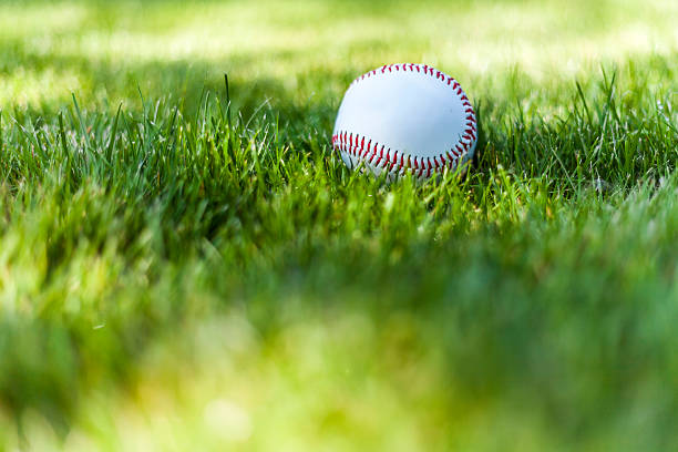 baseball on a grass i - spring training stock photos and pictures