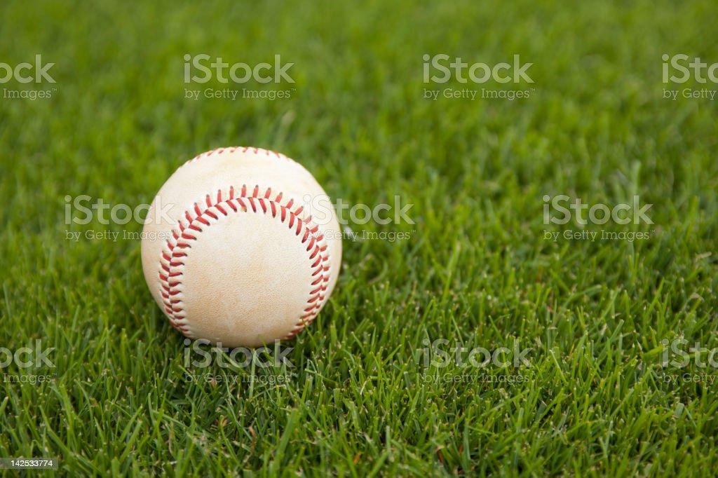 Baseball on grass at baseball field at baseball game stock photo
