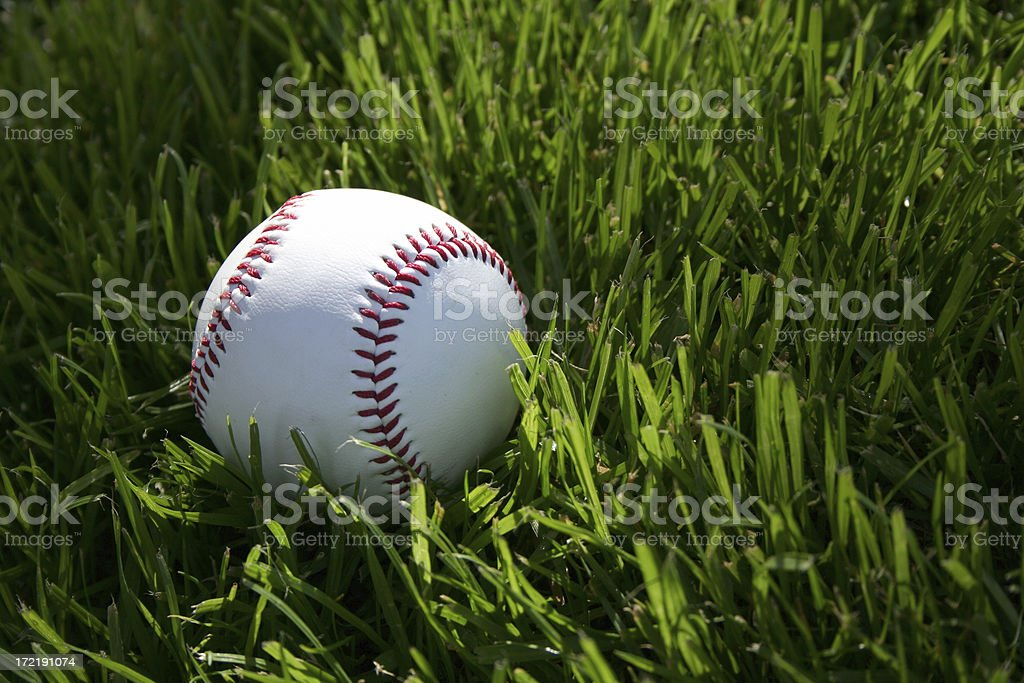 baseball on grass royalty-free stock photo