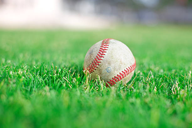 baseball on green grass field - spring training stock photos and pictures
