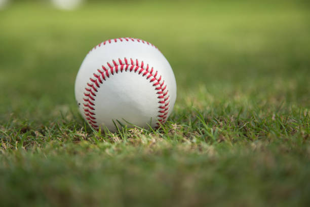 Baseball on green grass stock photo
