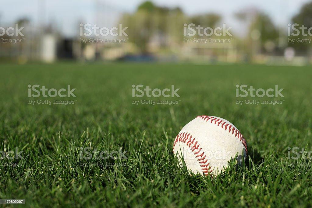 Baseball on Sports Field stock photo