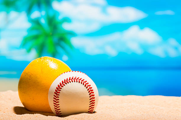 baseball on the beach for spring training grapefruit league - spring training stock photos and pictures