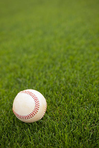 A baseball on the grass during a game stock photo