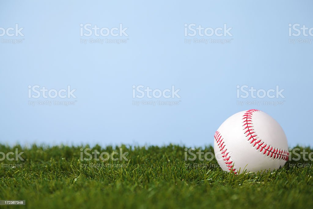 A baseball on the grass in a park royalty-free stock photo