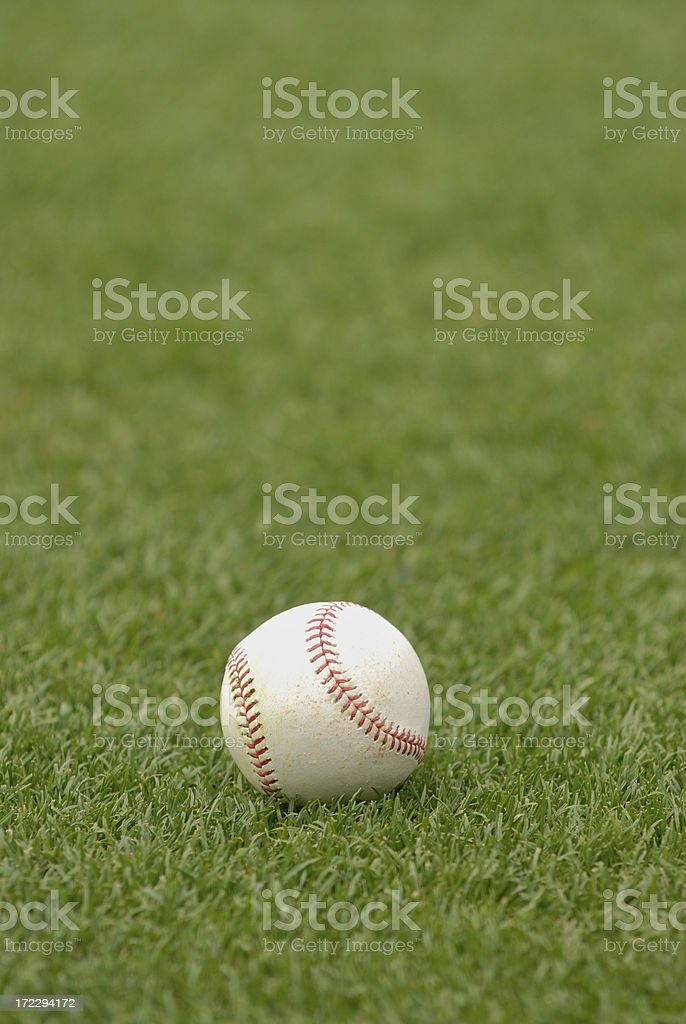 Baseball on the outfield royalty-free stock photo